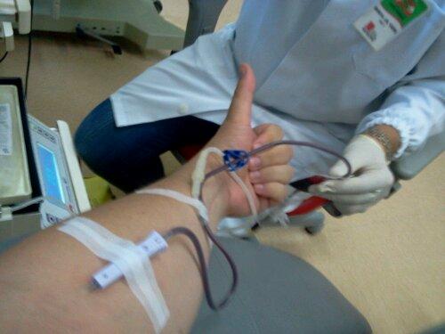 Programão de Sexta-Feira: Doar Sangue